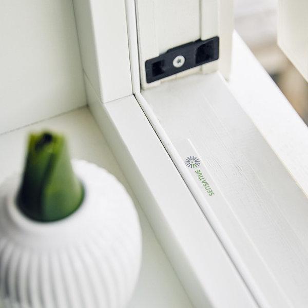 sensative strips guard mounted in window frame